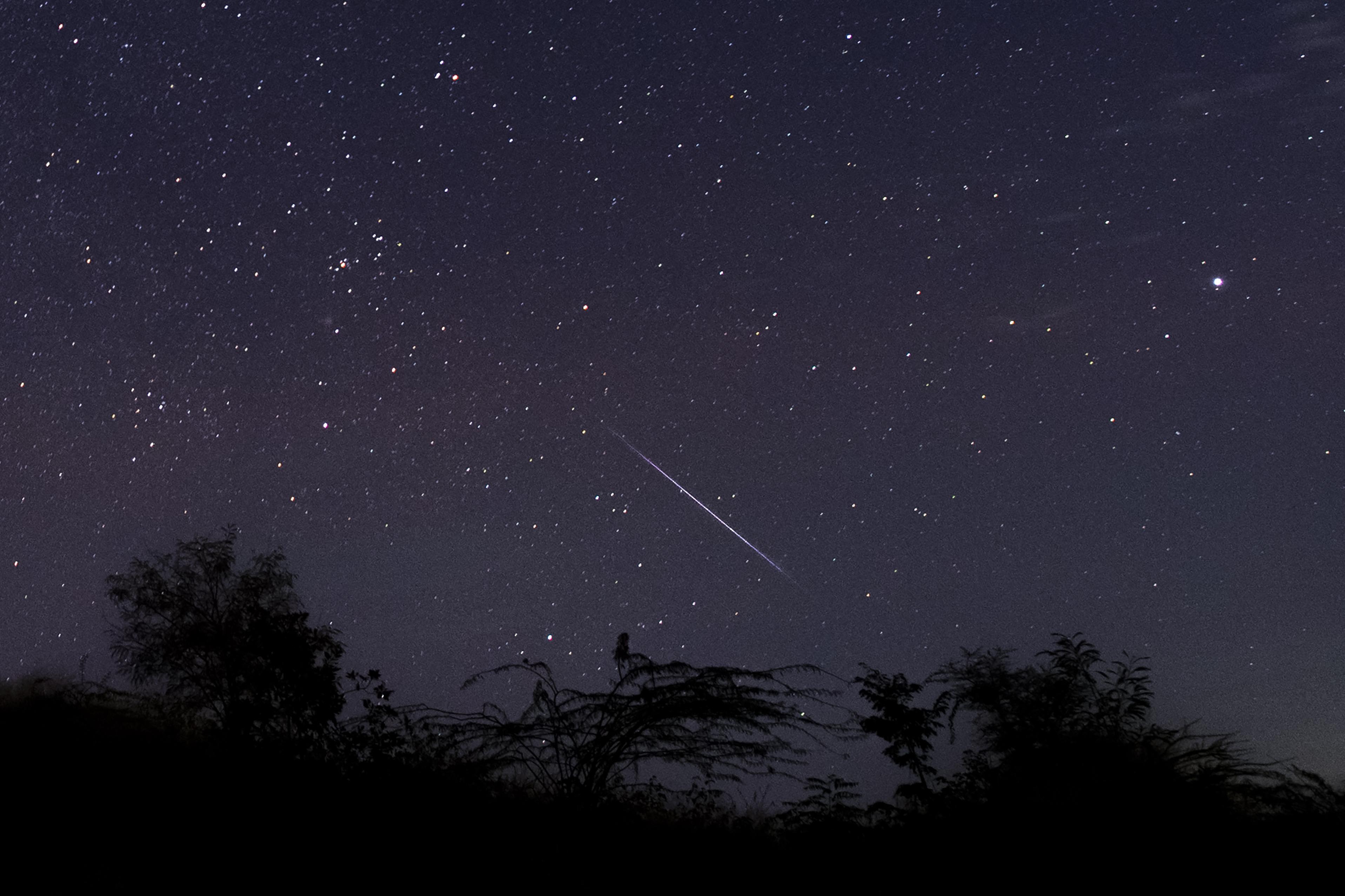 Chuva de meteoros Perseidas alcançará seu pico nesta quarta (11) e quinta-feira (12) e deve ser visível em grande parte do Brasil